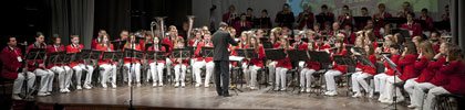 Orkestrai pakerėjo publiką ir komisiją